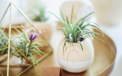 10 ideas para decorar un piso pequeño